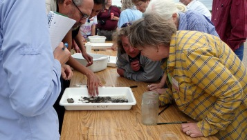 students leaning over a table looking at a platter of rocks and macro invertebrates